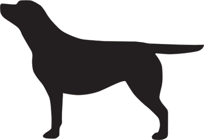400x274 Black Labrador Vehicle Sticker Rock Art Black