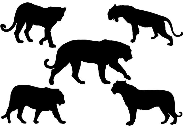 700x490 Free Tiger Silhouette Vector