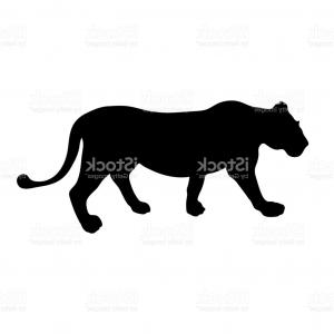 300x300 Silhouette Of A Walking Black Panther In A Tattoo Style Vector Gm