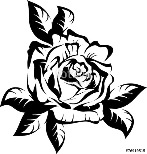 477x500 Black Silhouette Outline Rose With Leaves. Vector Illustration