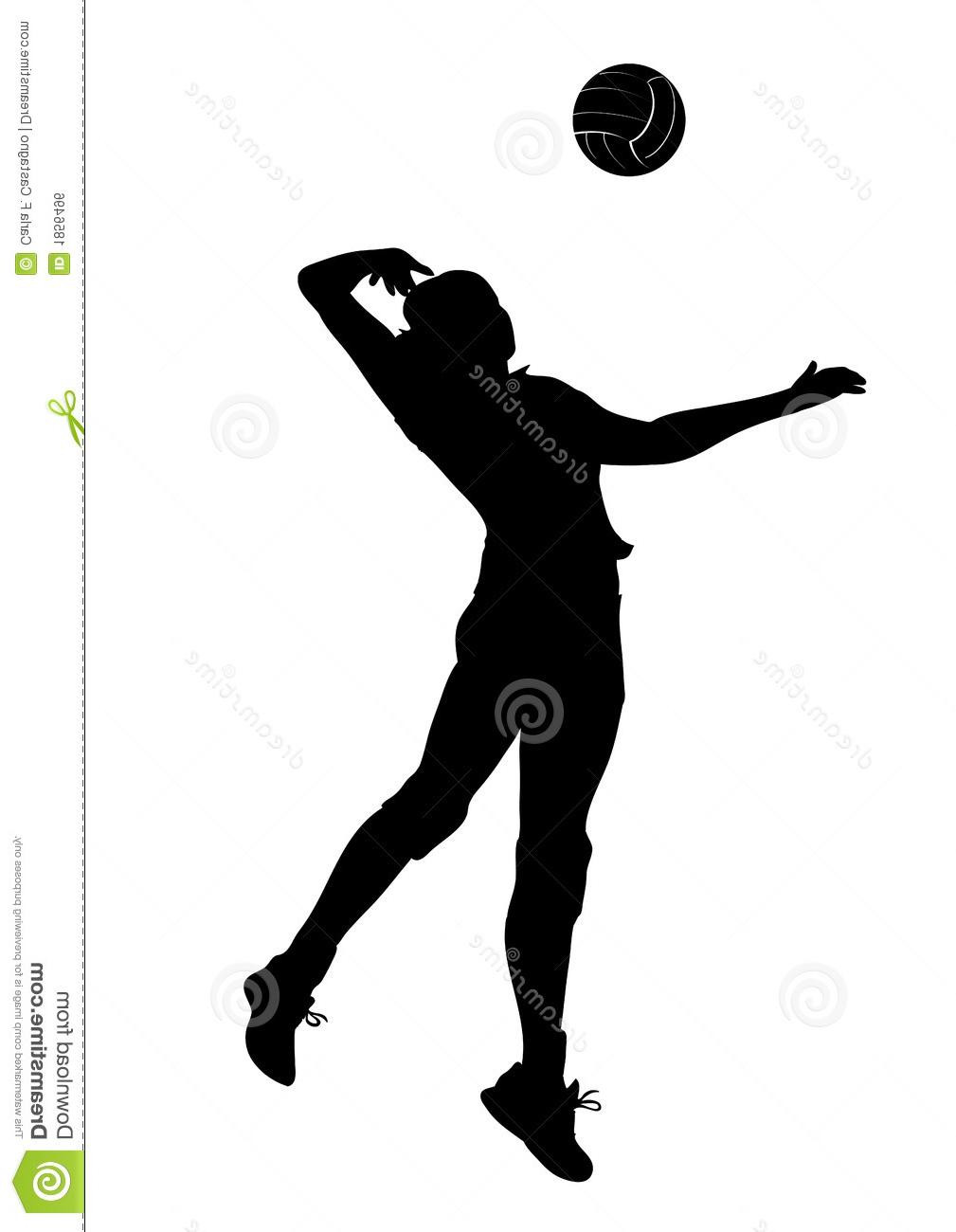 1009x1300 Volleyball Girl With Ball Black Silhouette On White Stock Photo