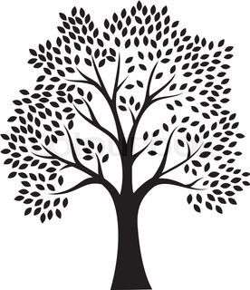 276x320 Tree Silhouette With Roots Stock Vector Colourbox