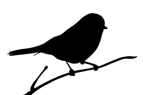 600x401 Silhouette Of A Bird Silhouette Finch Adobe Illustrator Cs5