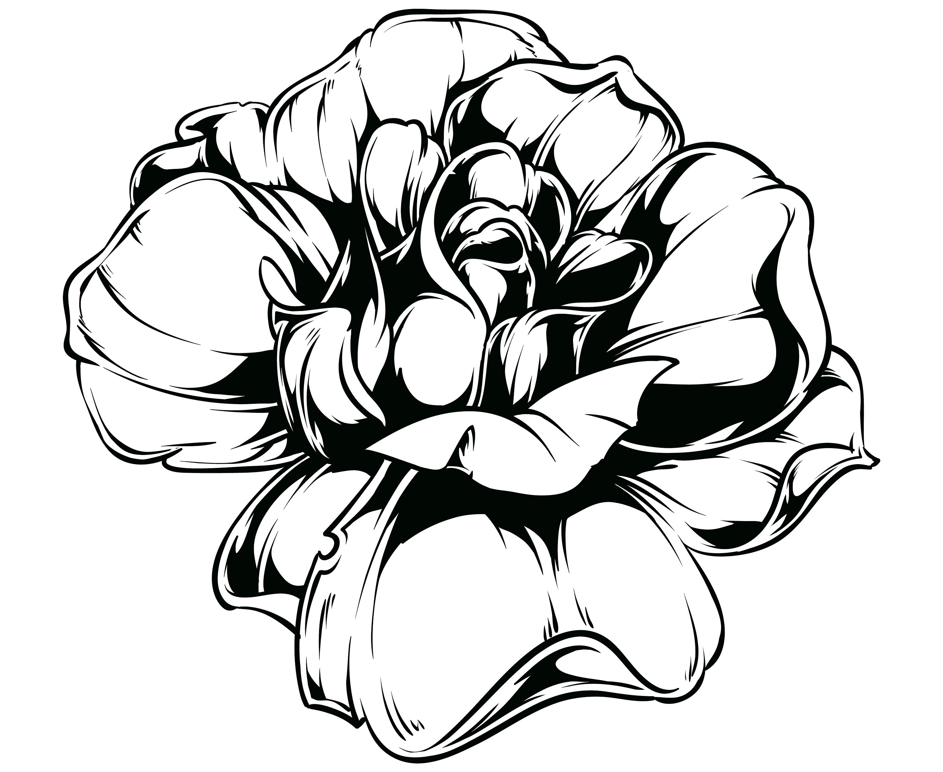 3000x2455 Rose Svg, Rose Blossom Svg, Rose Outline Svg, Rose Silhouette