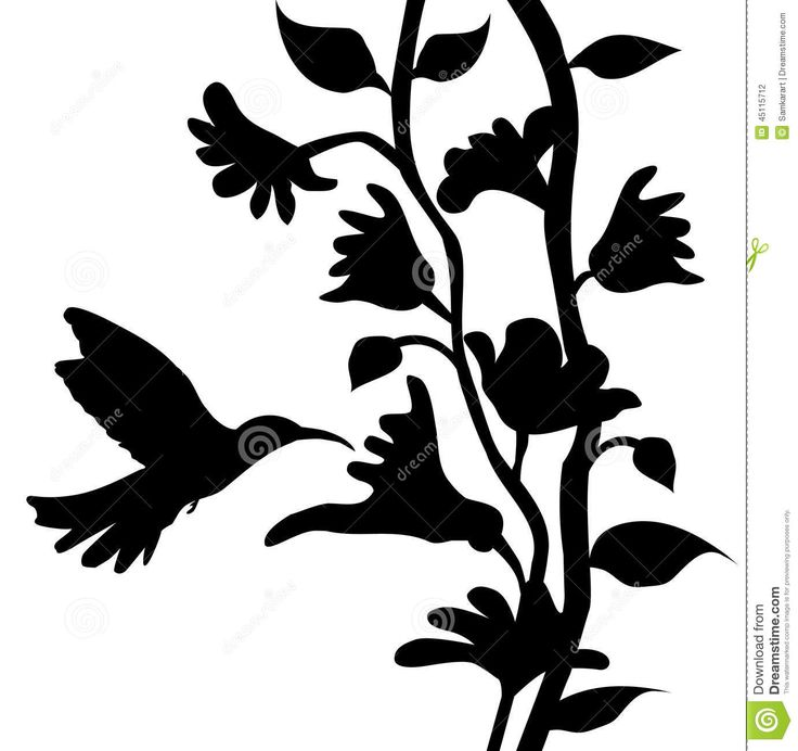 736x692 91 Best Flower Silhouette Images On Drawing Flowers