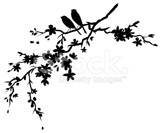 556x457 Two Little Birds Sitting On Cherry Blossoms Branch Silhouette
