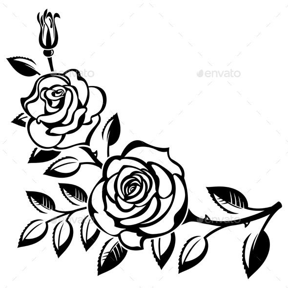 590x590 Branch Of Roses (Vector Eps, Ai Illustrator, Cs, Black And White
