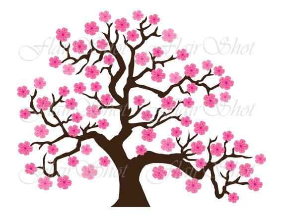 570x440 Digital Clip Art Pink Cherry Blossom Tree Clipart Bonsai