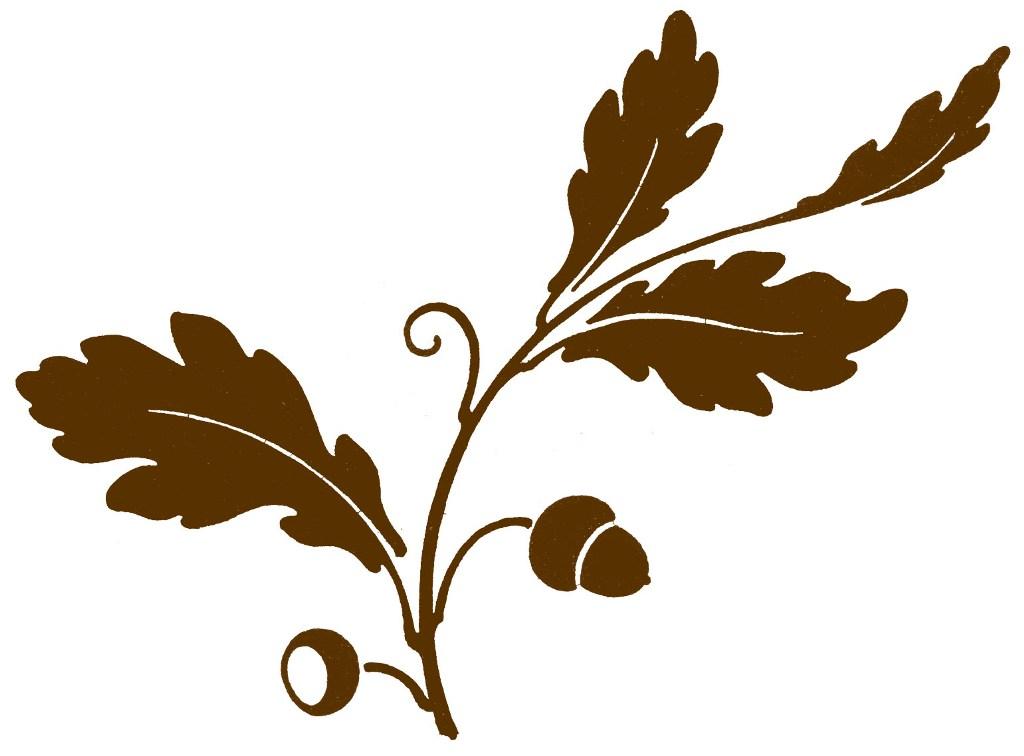 1024x756 Leaf Row Silhouette Clipart