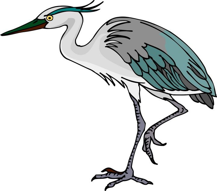 720x635 Great Blue Heron Clipart Marsh Grass 3581112
