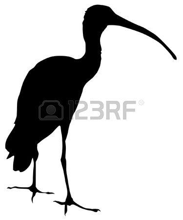 375x450 Blue Heron Clipart Ibis