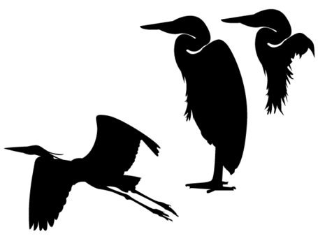 455x345 Heron Silhouette Vector, Vector Images