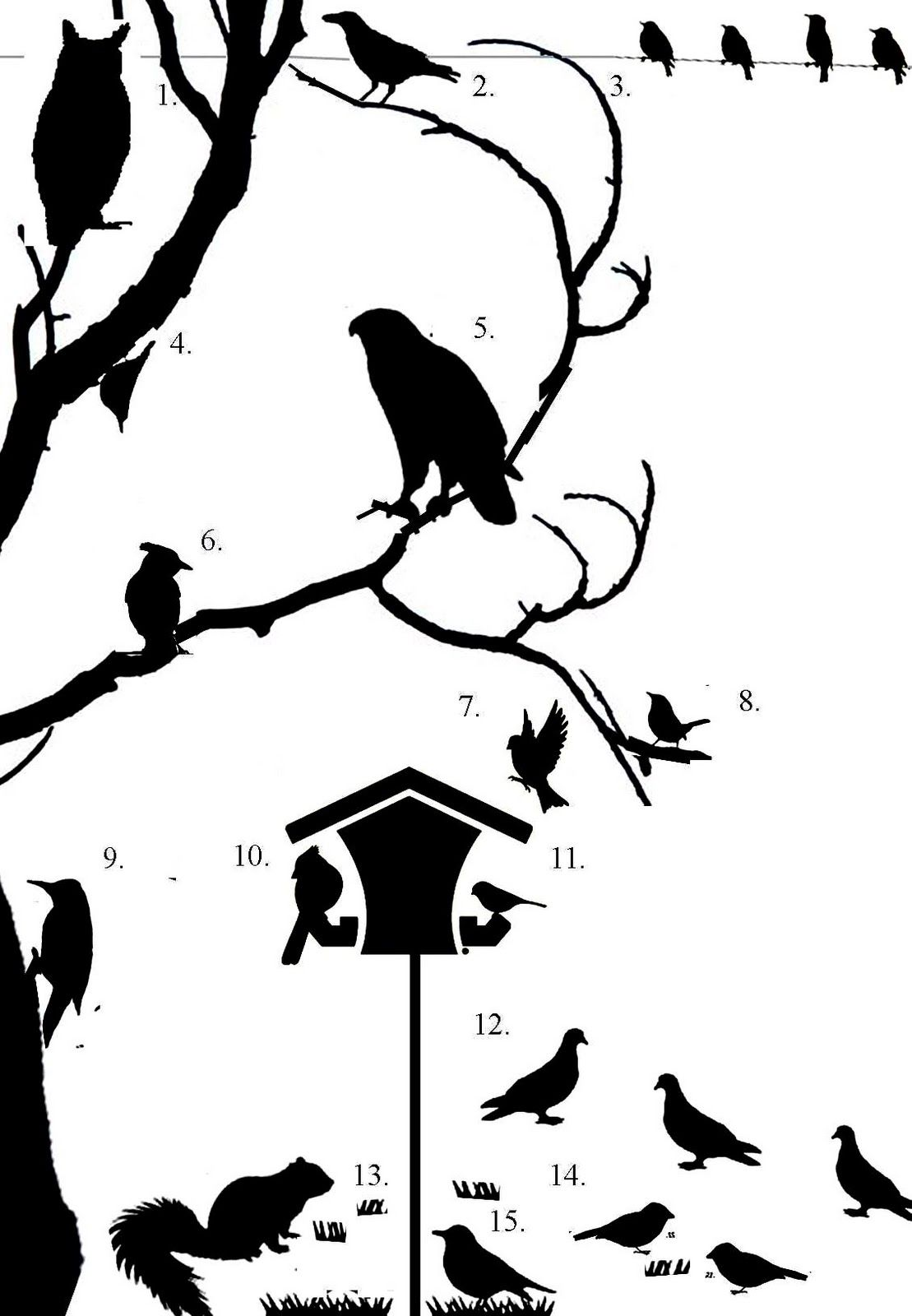 1109x1600 Wild Birds Unlimited Can You Identify Birds By Their Silhouette