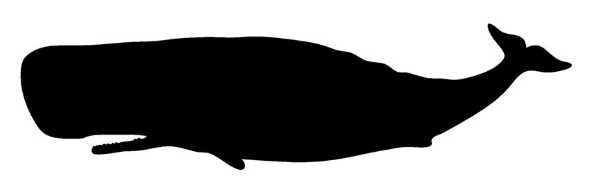 854x271 Whale Silhouette Decal Sticker