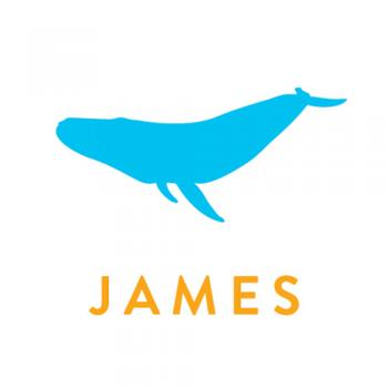 350x350 Blue Whale Silhouette Name Wall Sticker Little Village Boutique