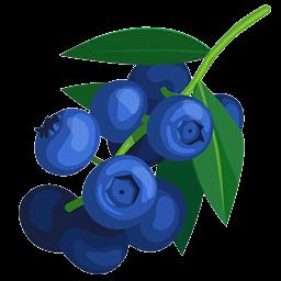 256x256 Blueberries Paradise Bay Wikia Fandom Powered By Wikia