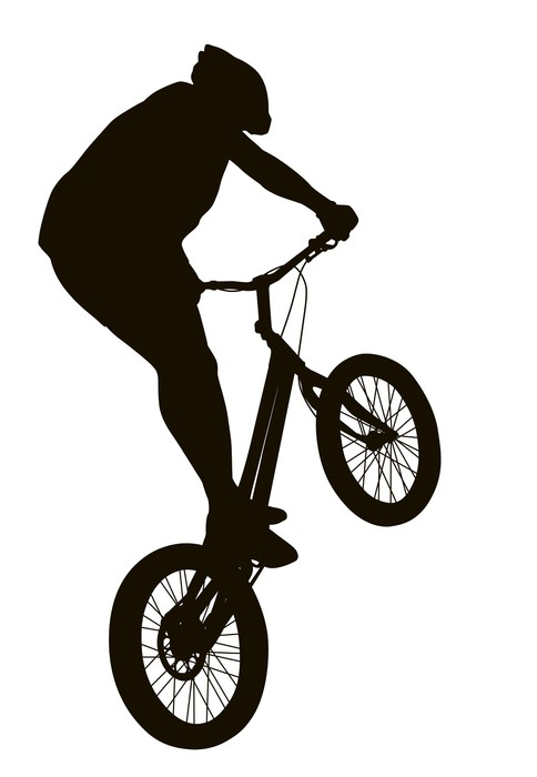 484x700 Bike Vector Silhouette Wall Mural We Live To Change