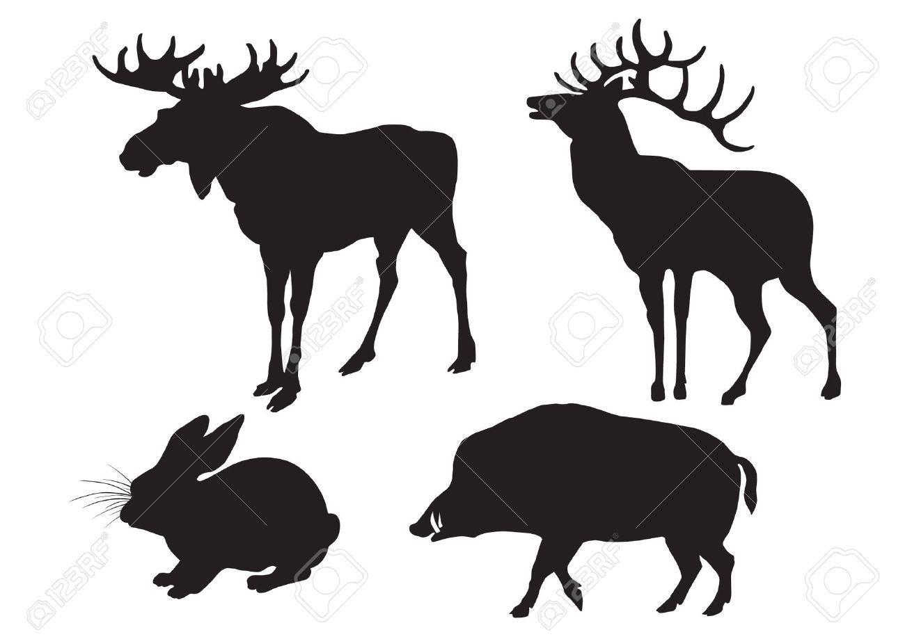 1300x919 Wild Boar Deer Clipart