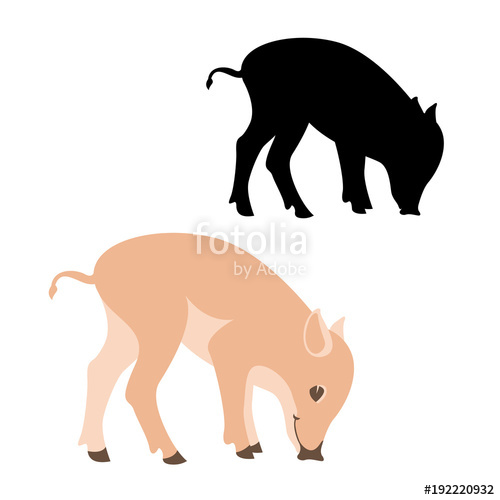 500x500 Pig Vector Illustration Flat Style Silhouette Black Stock Image
