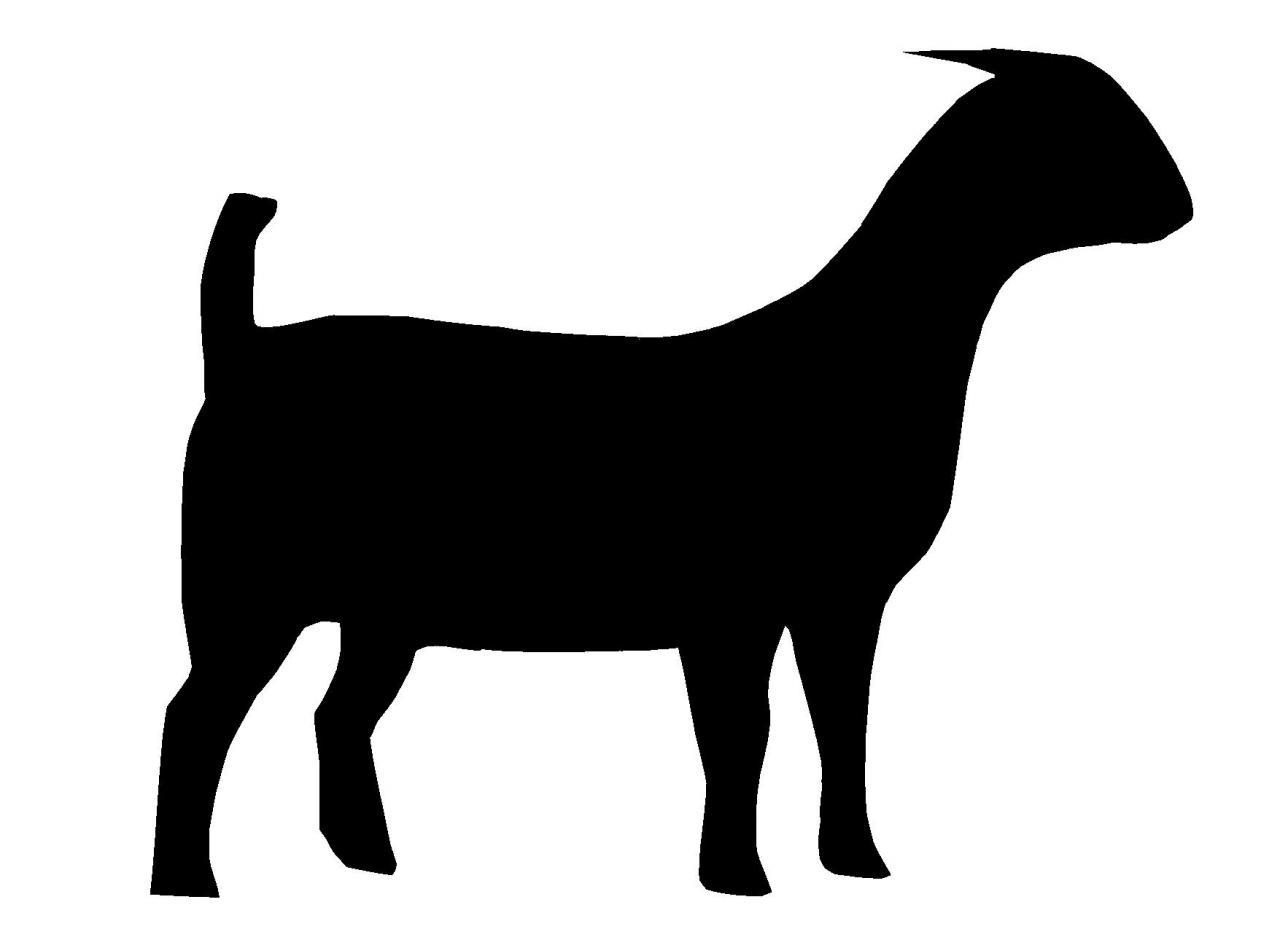 1280x929 Boar Clipart Goat