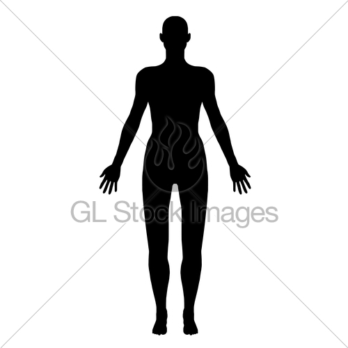 500x500 Body Silhouette Isolated Gl Stock Images