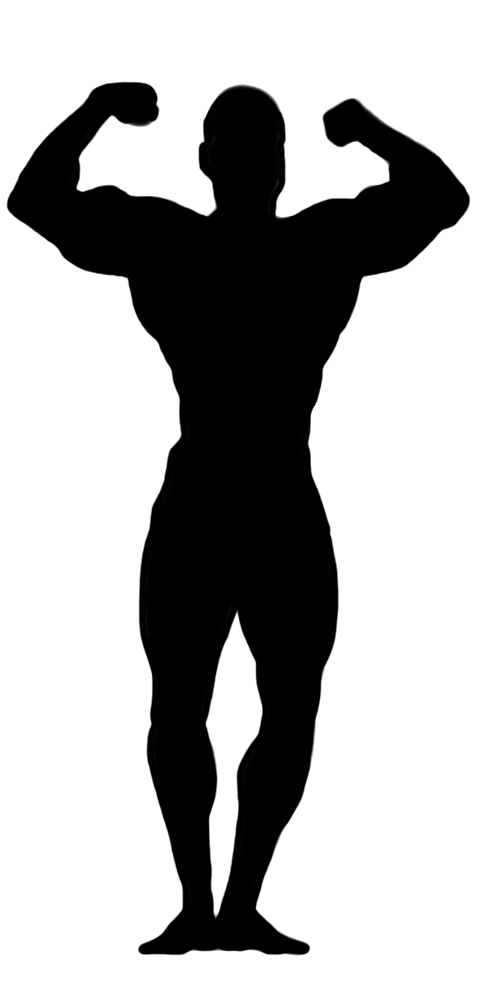 482x1008 Clipart Body Silhouette Collection