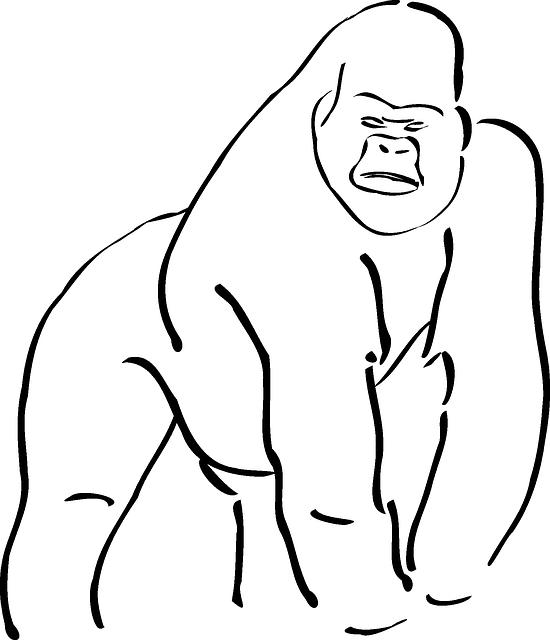 550x640 Outline Of A Gorilla Gorilla Silhouette Free Vector Silhouettes