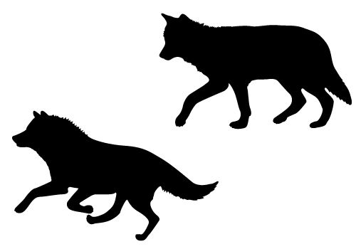 500x350 Wolf Silhouette Vector Get Free Download Wolf Silhouette Body