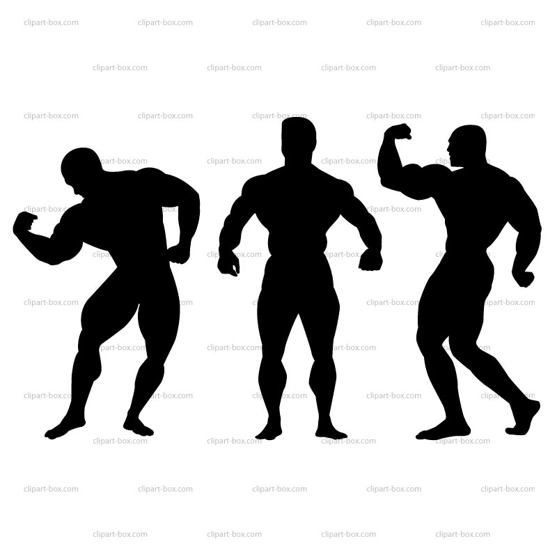800x800 Body Builder Clip Art Many Interesting Cliparts