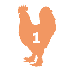 300x300 Can You Identify The Chicken By Its Body Type