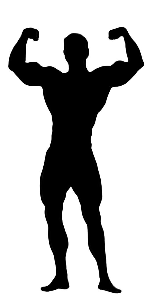 531x1043 Silhouette Clipart Bodybuilder