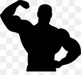 260x240 Free Download Fitness Centre Bodybuilding Silhouette