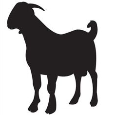 236x236 Boer Goat Silhouette Clipart Panda