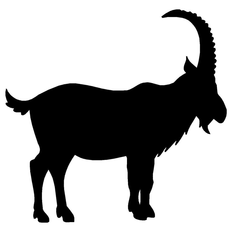 800x800 Buy goat sticker and get free shipping on