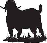 200x182 Boer Goat Head Clip Art Clip Art By Jackie Nix Cartoon Drawing