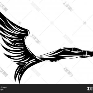 300x300 Military Planes Svg Pdf Eps Dxf Png Clipart Vector Graphic Jet