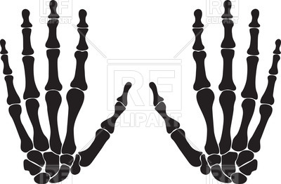 400x262 Silhouettes Of Hand Bones Royalty Free Vector Clip Art Image