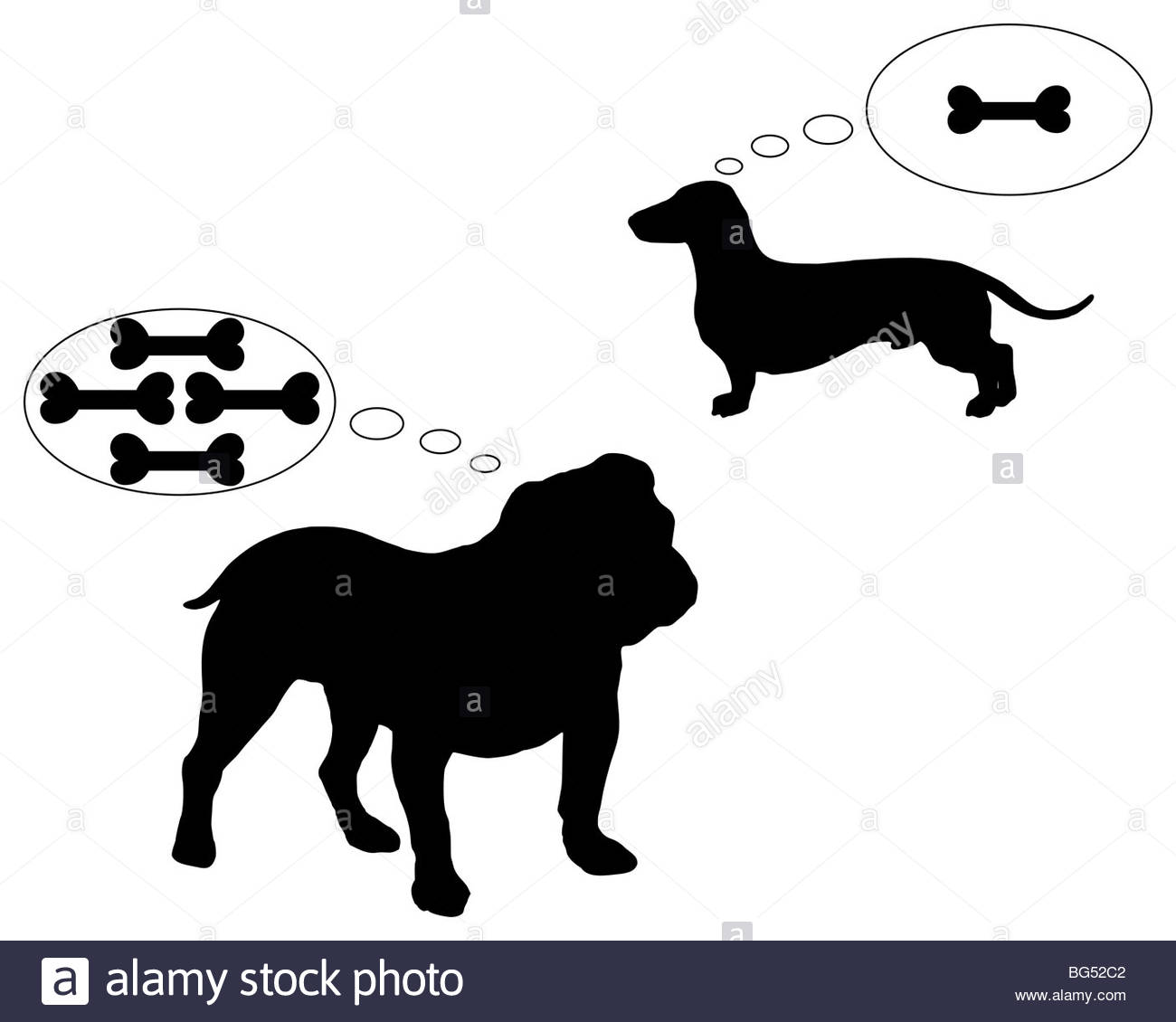 1300x1130 English Bulldog And Dachshund Dream Of Bones Stock Photo, Royalty