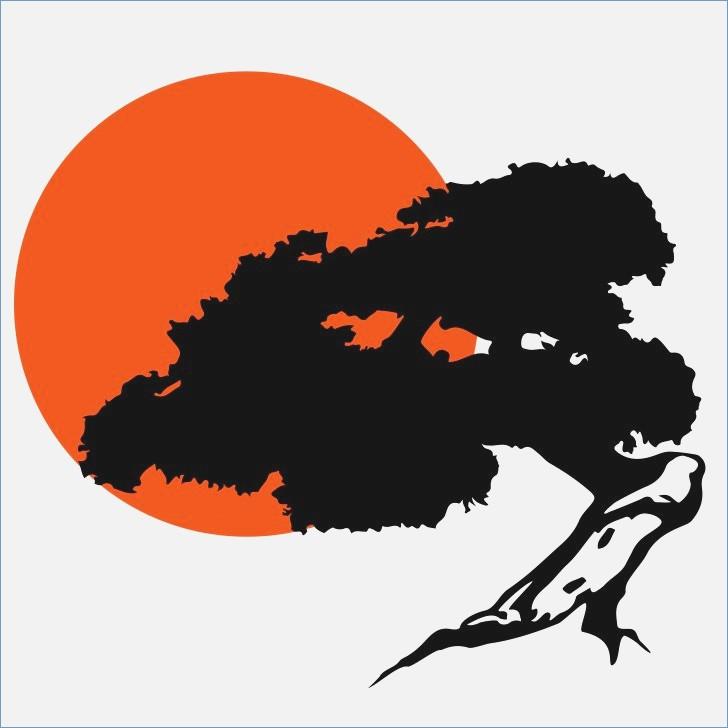 728x728 Bonsai Tree Albany Ny