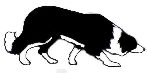 495x247 Gc51qhe Shadowfax's Run Give A Dog A Bone (Traditional Cache)