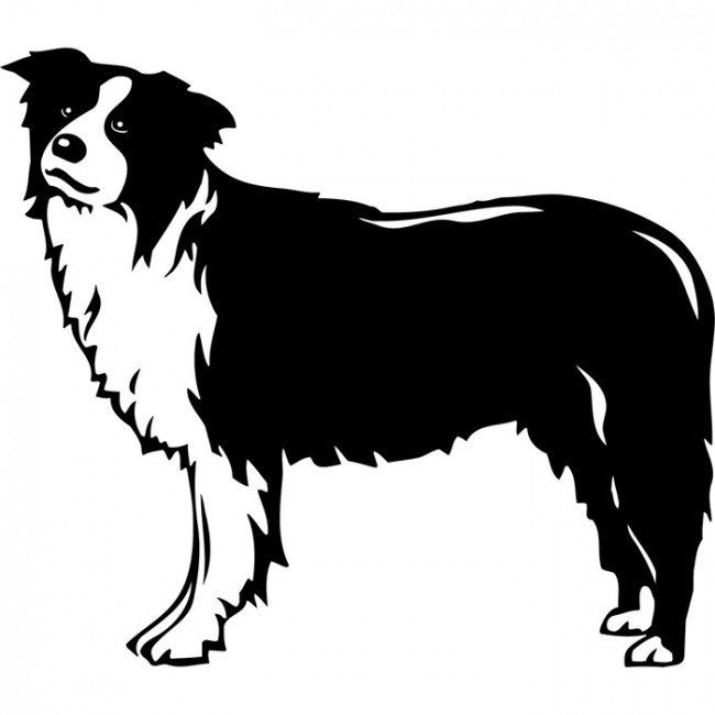 650x650 Image Result For Dog Decals