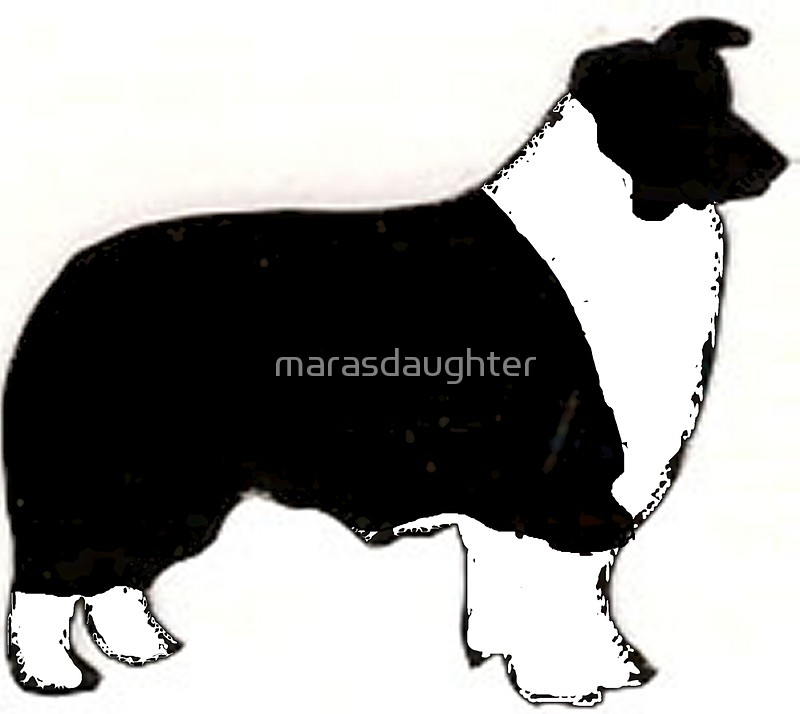 800x714 Border Collie Balck And White Silhouette Stickers By
