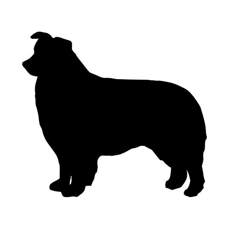 800x800 10.69.5cm Border Collie Dog Vinyl Decal Reflective Car Window