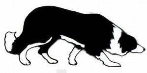 299x149 Image Result For Border Collie Clip Art Border Collie