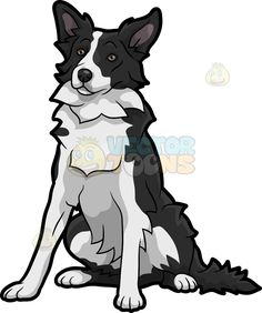 236x282 Lovable Border Collie Dog Cartoon Stock Clip Art Vector Toons