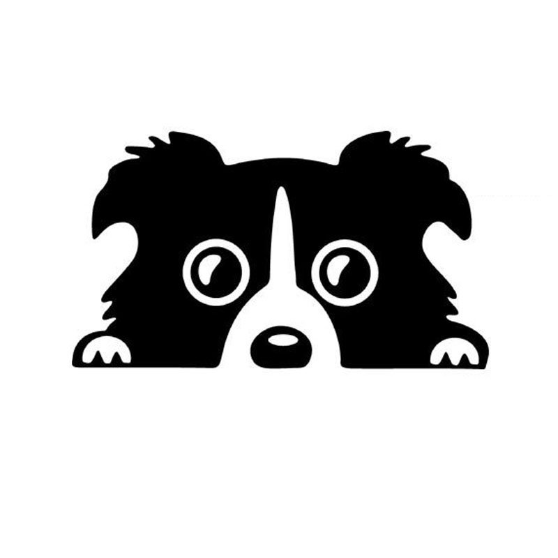 800x800 Border Collie Dog Pet Car Sticker Cartoon Animal Vinyl Car Decal