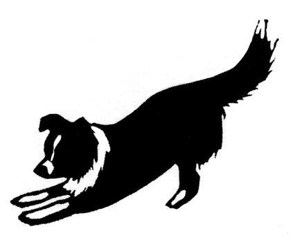 423x360 Border Collie Play Rubber Stamp Collie And Dog