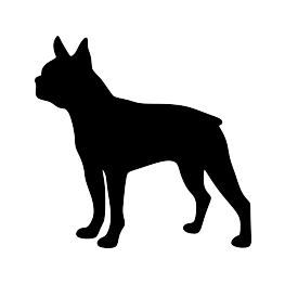 263x262 Boston Terrier Silhouette Pets Terrier, Silhouette
