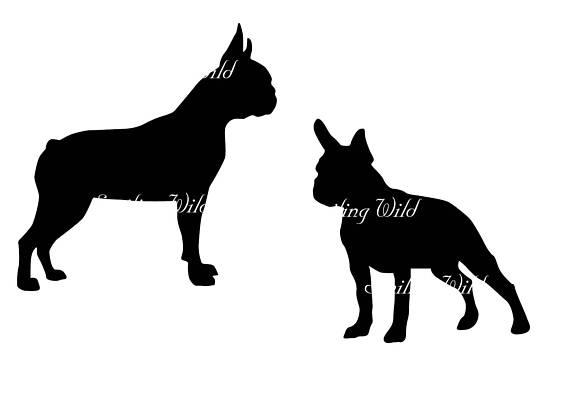 570x403 Boston Terrier Art Svg Silhouette Design Printable Boston Terrier