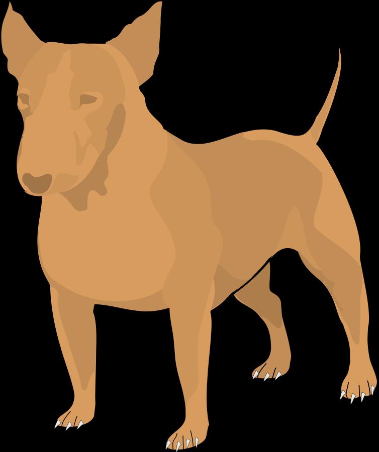 754x900 Bull Terrier Cartoon